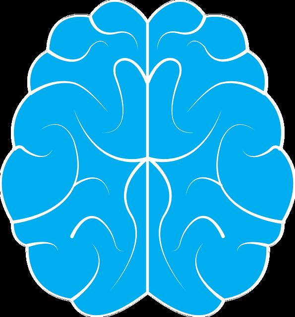 ¿De verdad el cerebro se encoje?